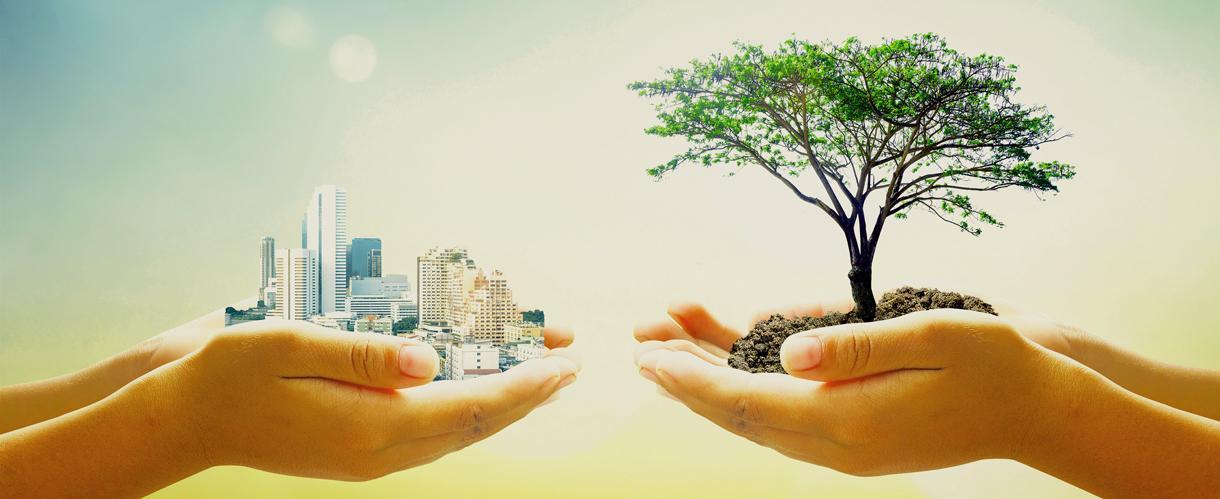 rics-civil-sustainable